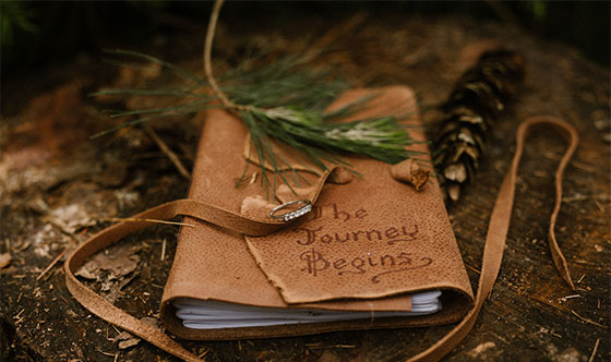 Leather bound journal outside on a pine tree stump