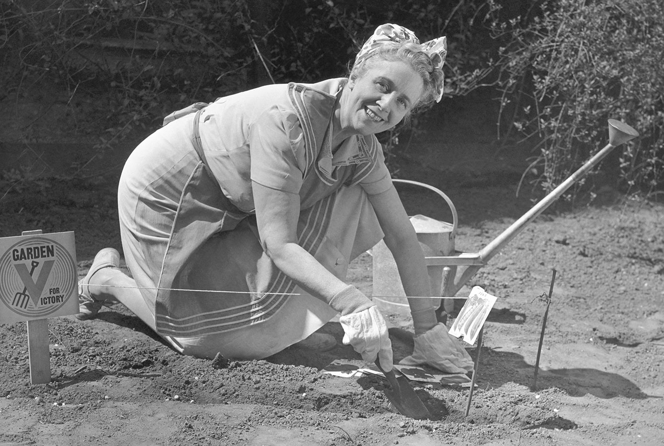 historical image of woman working on victory garden