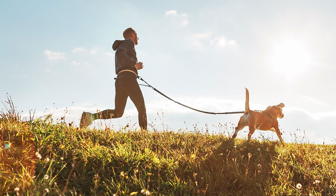 outdoor exercising with pet
